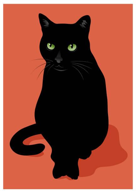 Black cat vector illustration vector art illustration