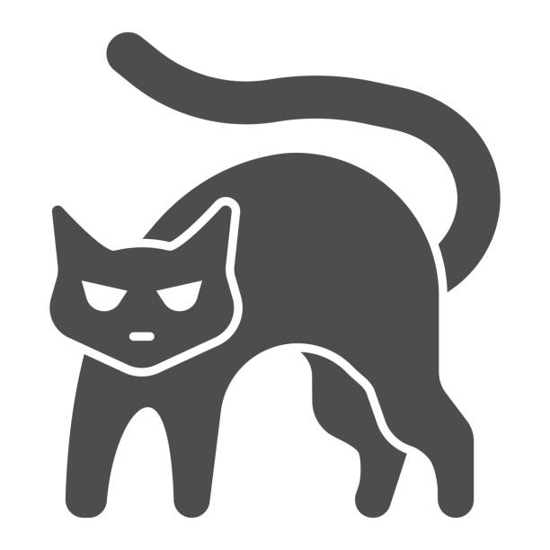 2 880 White Fluffy Cat Illustrations Clip Art Istock