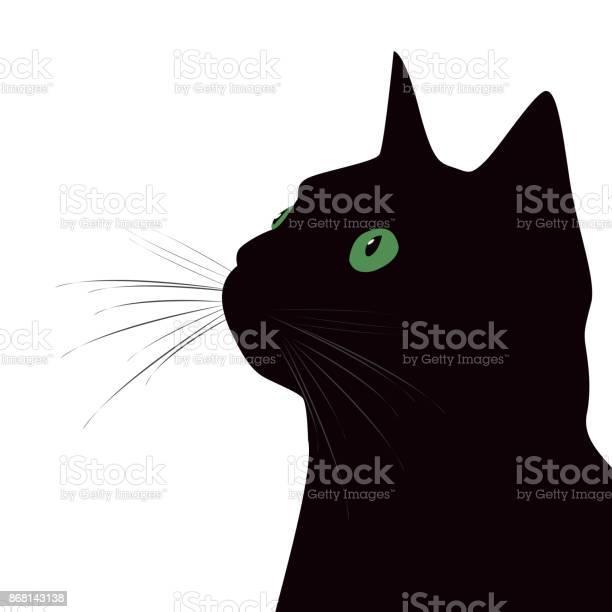 Black cat with green eyes on white background vector id868143138?b=1&k=6&m=868143138&s=612x612&h=oa97naydijqp3lgrukta7aabgt80bjh5sn914baul7s=