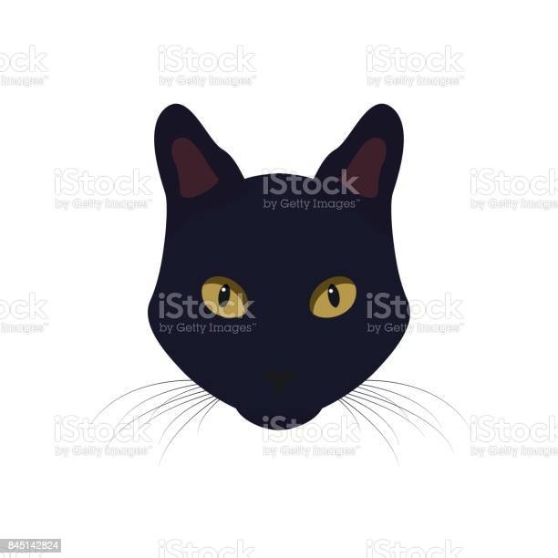 Black cat with yellow eyes black cat vector illustration vector id845142824?b=1&k=6&m=845142824&s=612x612&h=nffvmj0ungzydqgbje2szxqvjf7ifbwubn0 al6 rd8=