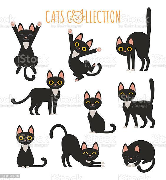 Black cats collection vector id623106016?b=1&k=6&m=623106016&s=612x612&h=rl9tvrqeibh sfhgi8q2ztbhvw2hrdxclinuhmwfjau=