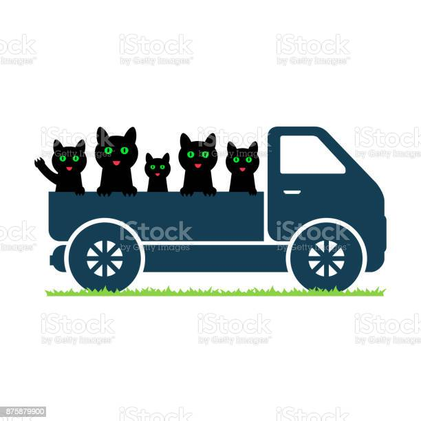 Black cats ride in a truck vector id875879900?b=1&k=6&m=875879900&s=612x612&h=xfn3takxqyumezaznalrpghz7riw0jpaxouydwbhkks=