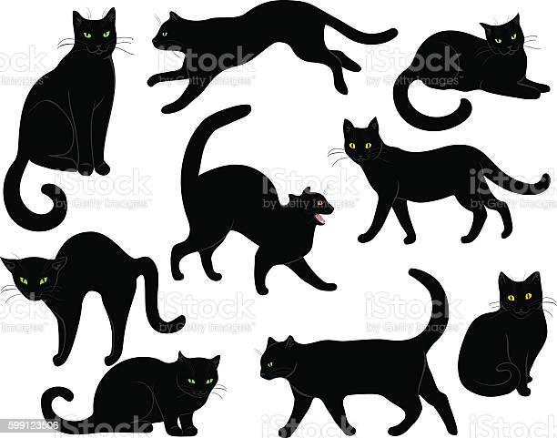 Black cats set vector id599123506?b=1&k=6&m=599123506&s=612x612&h=qiijr7odm0tgs6us322b5ychr69czfkl 6ef5cjofkc=