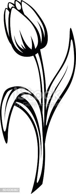 Vector Line Art Converter : Black contour of a tulip flower vector line art