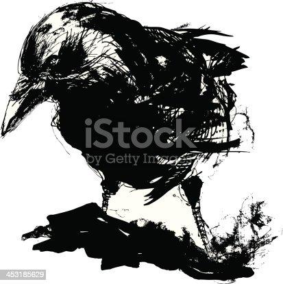 istock Black crow 453185629