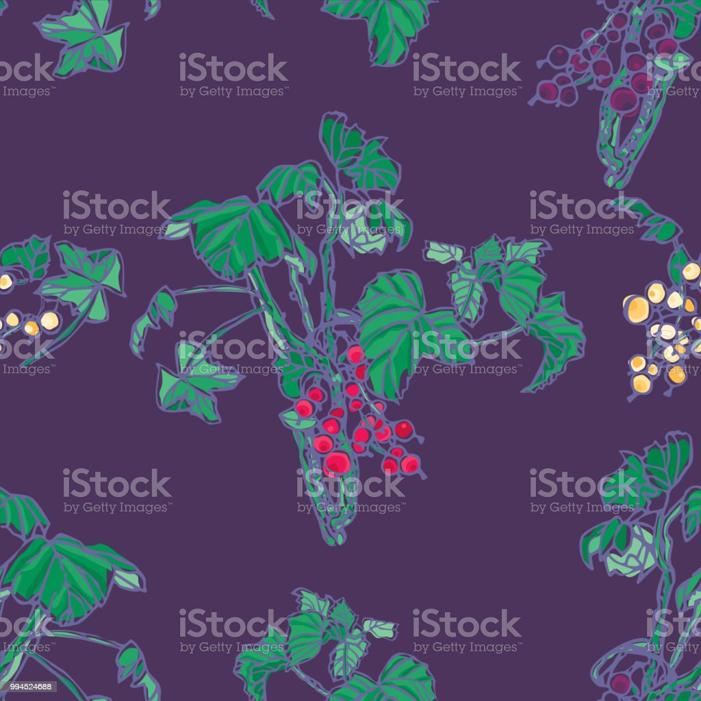 Black Currant and red currants seamless pattern vector art illustration