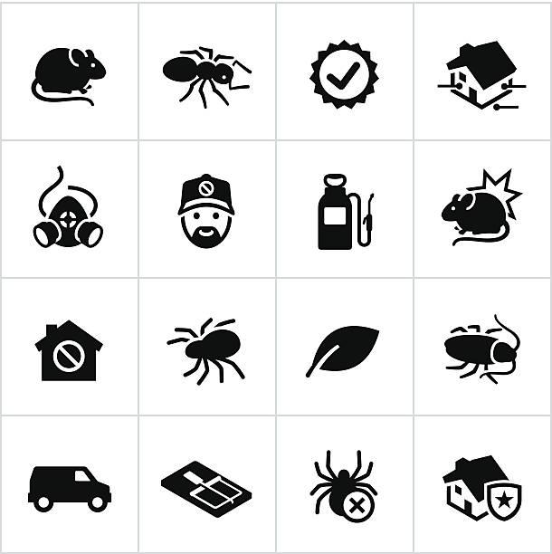 illustrazioni stock, clip art, cartoni animati e icone di tendenza di derattizzatore icone nero - trappola per topi