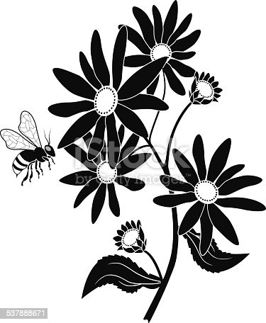 A vector illustration of black eyed susan and honey bee in black and white. An EPS file and a large jpg are included in this download.