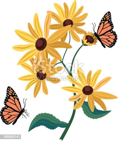 A vector illustration of black eyed Susans and monarch butterflies.