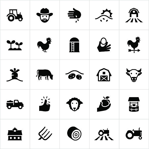 Black Farming and Agriculture Icons Farming, agriculture, growing, cultivation, farm, farm animals, vector, icons, symbols. All lines/shapes are cut from icons and merged. weather vane stock illustrations