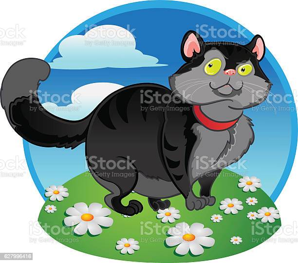 Black fat cat on the color background vector id627996416?b=1&k=6&m=627996416&s=612x612&h=dndiahfgp8ysw65j3bo3vrcjym6 e0cswxx1xd3jwx4=