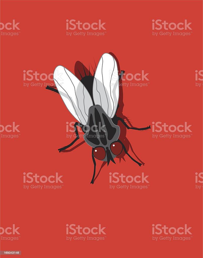 Black Fly royalty-free stock vector art