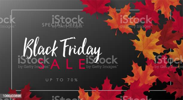 Black Friday Sale Banner With Frame And Maple Leaves Vector Illustration Template Stock Illustration - Download Image Now