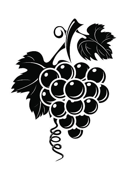 Black grapes icon isolated on white background vector art illustration
