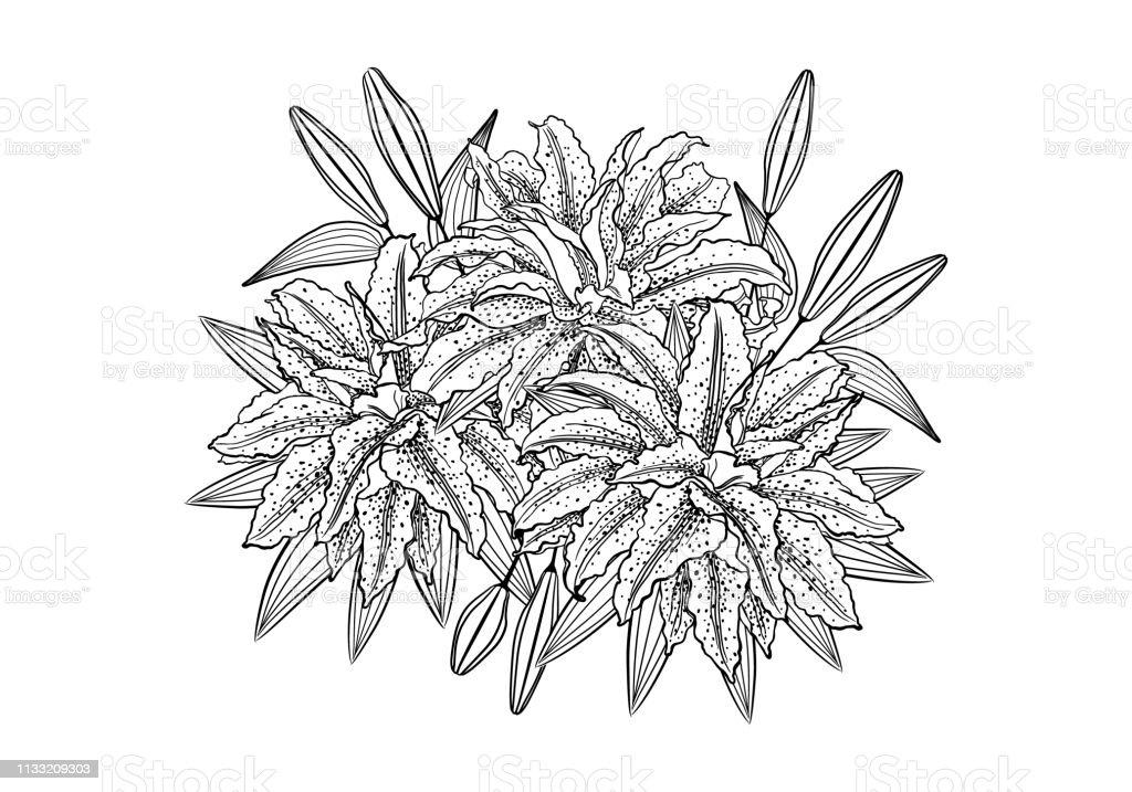 Graphique Noir Dessin à La Main Calligraphique De Fleurs Dun
