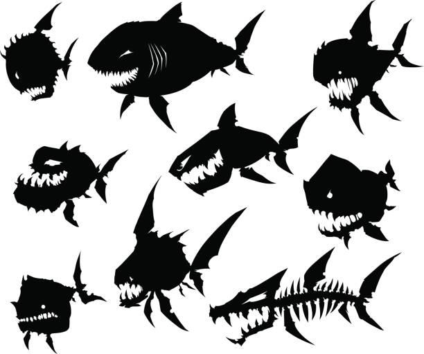 black graphic silhouette cool monster fish on white background - animal skeleton stock illustrations