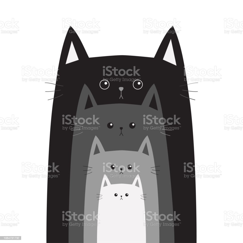 Tête De Chat Gris Noir Chats Dans Une Rangée Gros Moyen