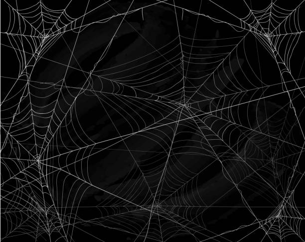 illustrazioni stock, clip art, cartoni animati e icone di tendenza di sfondo halloween nero con ragnatele - halloween