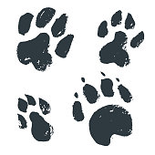Black hand drawn isolated wild animal footprints. Grunge ink ill