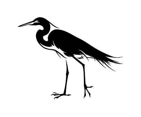 Black Heron bird silhouette cut out vector icon