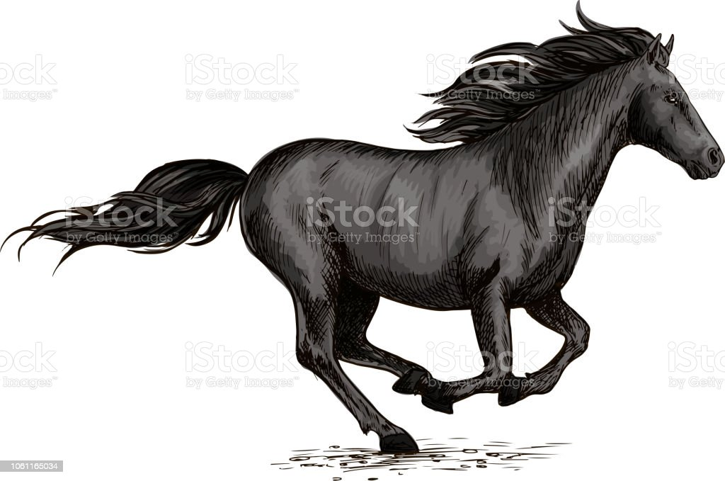 Black Horse Running On Racing Sport Stock Illustration Download Image Now Istock