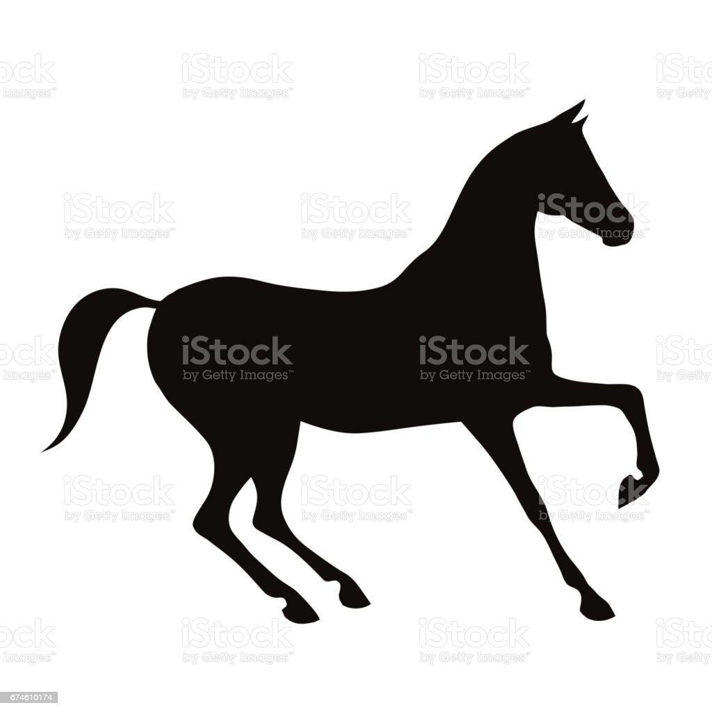 Black horse silhouette on white. vector art illustration