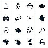 Black Human Anatomy Icons