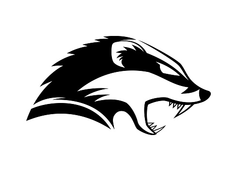 Black icon angry badger.