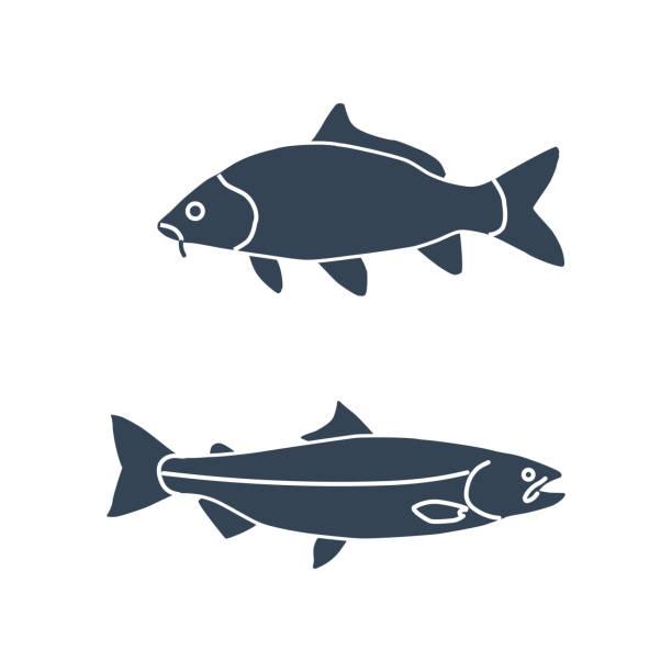 ilustrações de stock, clip art, desenhos animados e ícones de black icon fish, carp and salmon - aquacultura