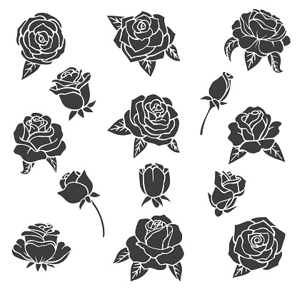 Black illustrations of roses. Vector silhouette of different plants