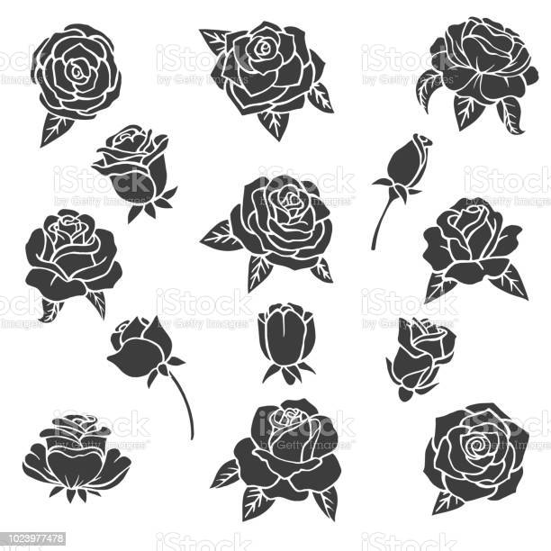 Black illustrations of roses vector silhouette of different plants vector id1023977478?b=1&k=6&m=1023977478&s=612x612&h=gy2f5y19nvdupybsfyna4lguanviw8jyrhditqawo2y=