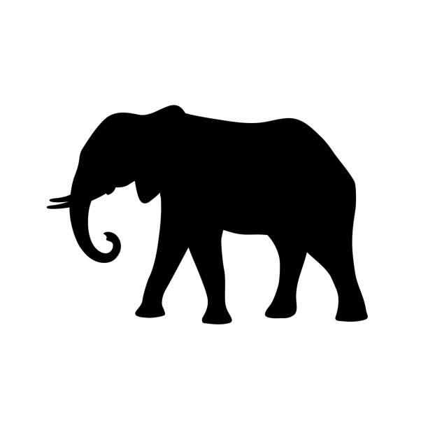 black isolated silhouette of elephant on white background. side view. - elephant stock illustrations
