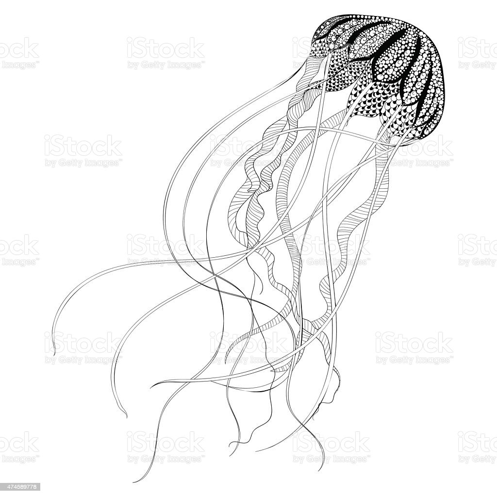 Black Jellyfish. Hand Drawn vector illustrati vector art illustration