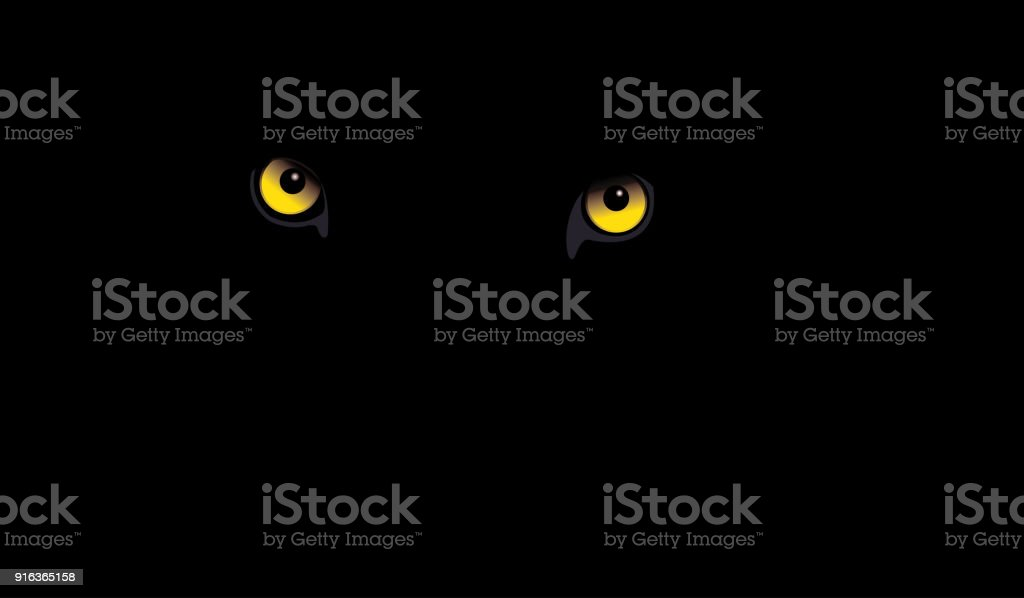 Black Leopard eyes vector art illustration