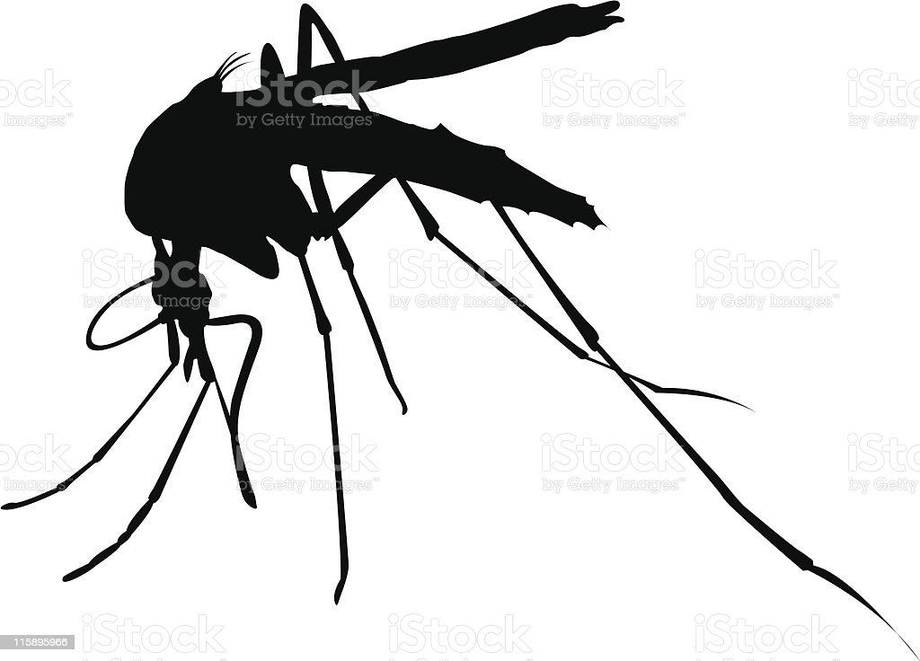Black mosquito shadow for drawing vector art illustration