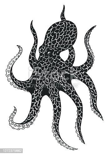 Black octopus vector image.