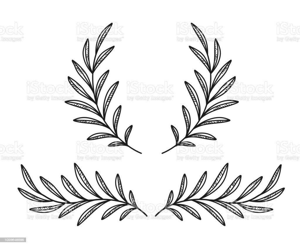 Black Olive Branches And Wreath Stock Vector Art & More