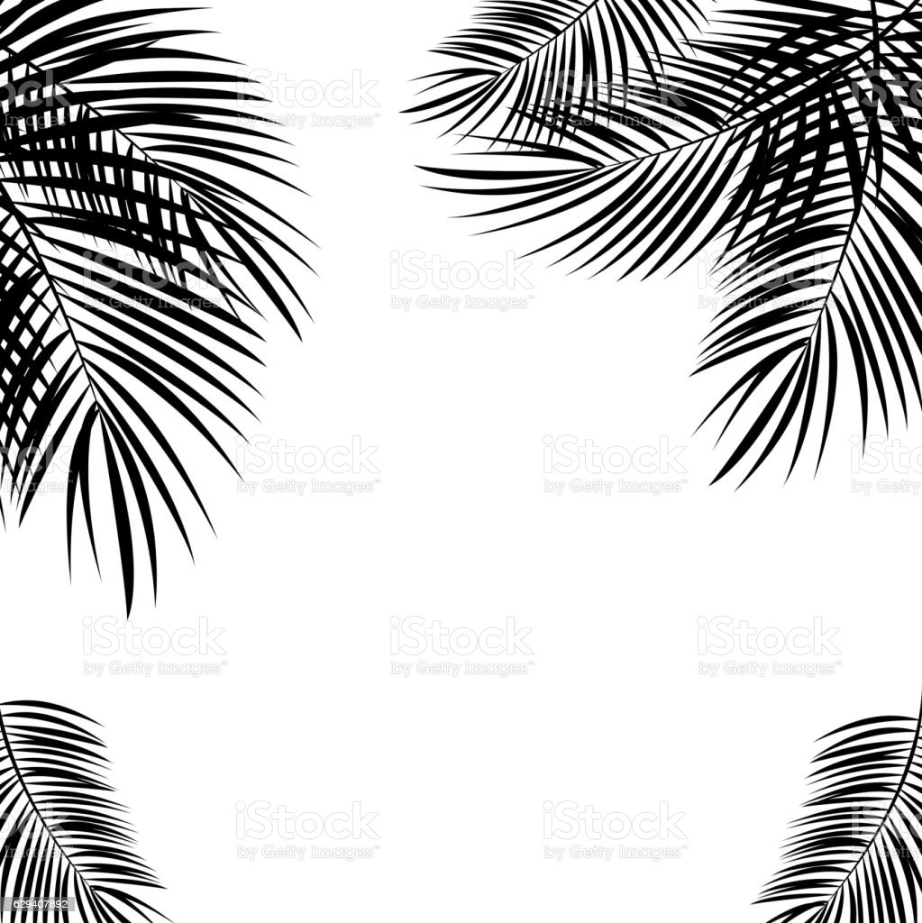 Black Palm Leaf on White Background. Vector Illustration. vector art illustration