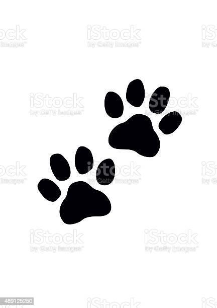 Black paw prints vector illustration vector id489125250?b=1&k=6&m=489125250&s=612x612&h=spr5p6ogdszg r7gdmdnjs3mccs7nokq170wenw0bp0=