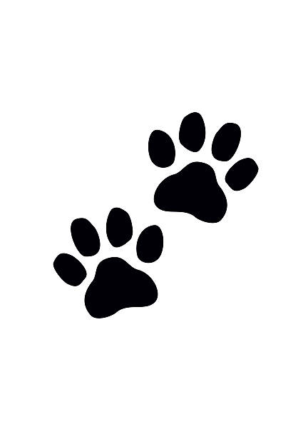 Black Paw Prints. Vector illustration. vector art illustration