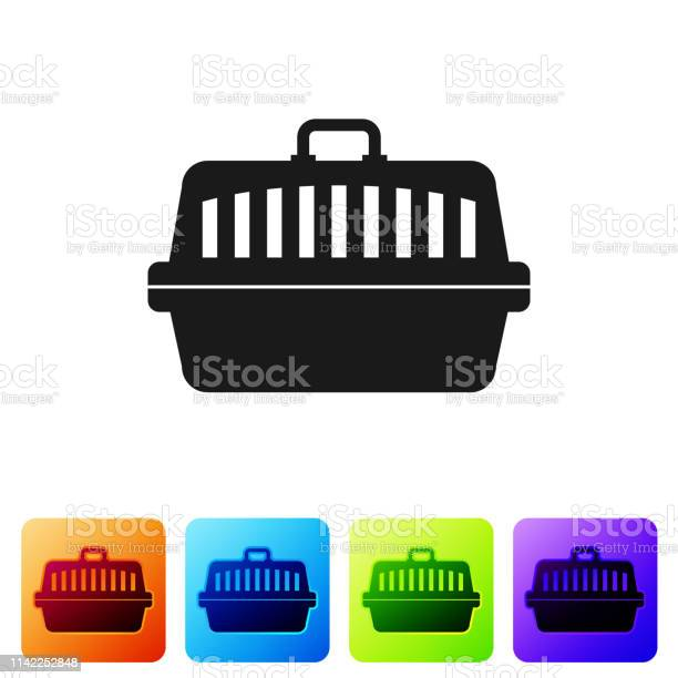 Black pet carry case icon isolated on white background carrier for vector id1142252848?b=1&k=6&m=1142252848&s=612x612&h=evixe3dw asb tqsbwfbammca5a8umenvzbs6xx9ohq=