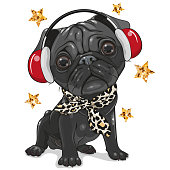 istock Black Pug Dog with headphones on a white background 1264508731
