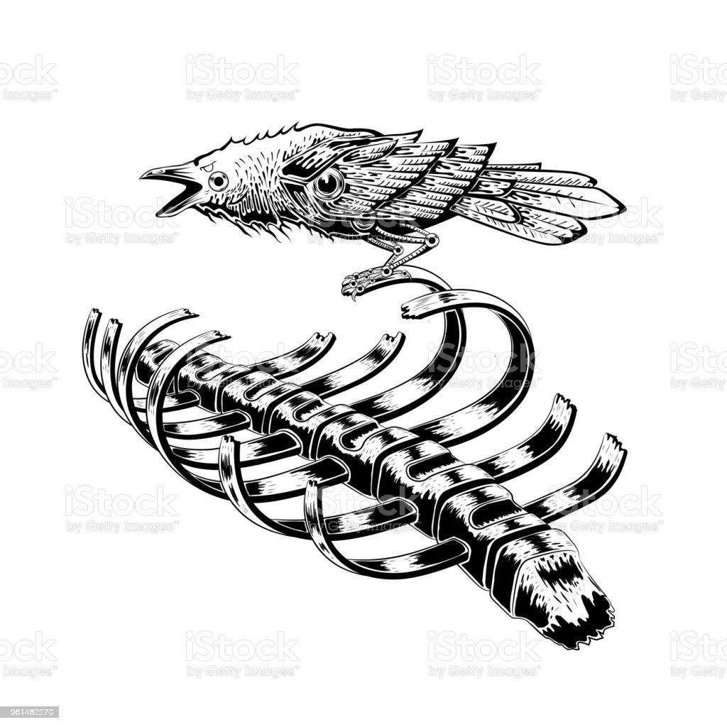 Ilustración de Estancia De Pájaro Cuervo Negro En Esqueleto De ...