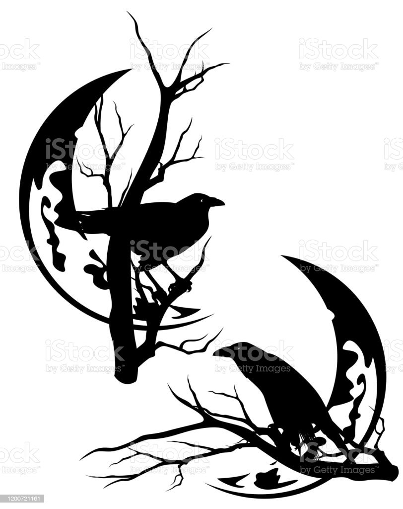 black raven birds on tree branches against crescent moon vector silhouette stock illustration download image now istock black raven birds on tree branches against crescent moon vector silhouette stock illustration download image now istock
