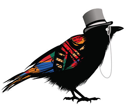 Black raven with hat