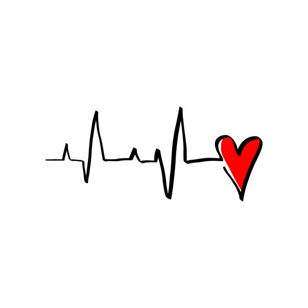 Black Red Heart cardiogram vector illustration monoline style. Romantic minimalism calligraphy love sign heartbeat. Hand drawn icon Valentines day, wedding. Medicine concept symbol for greeting card Black Red Heart cardiogram vector illustration monoline style. Romantic minimalism calligraphy love sign heartbeat. Hand drawn icon Valentines day, wedding. Medicine concept symbol for greeting card taking pulse stock illustrations
