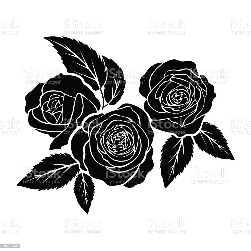 Black Flower Rose From Lace On White Background: ʲ�은 ̞�미 ʷ�림 ͝�색 ˰�경 ʳ�립 ː� ˲�터에 ˬ�신 ʲ�정에 ˌ�한 ̊�톡 ˲�터 ̕�트 ˰� ʸ�타 ̝�미지