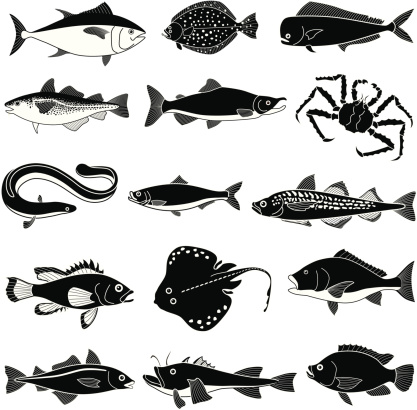 Black saltwater fish icons on white background
