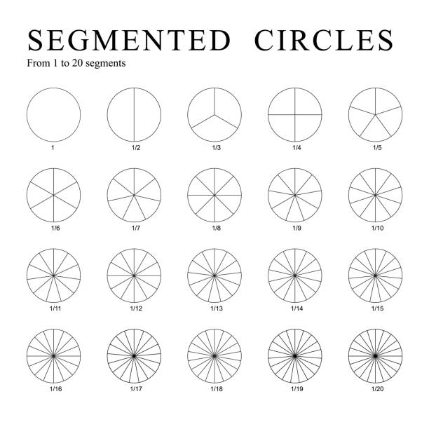 Black segmented circles isolated on a white background. Vector. Black segmented circles isolated on a white background. Set of twenty circles divided into segments - from 1 to 20. Vector. cross section stock illustrations