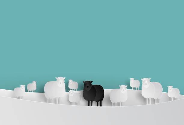 Black Sheep in White Sheep Group in Paper cut Style Black Sheep in White Sheep Group in Paper cut Style counting stock illustrations